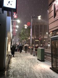 東京雪景色2018-1