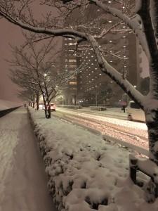 東京雪景色2018-3